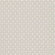 Fabrics Transparent EXTERNAL SCREEN CLASSIC Natté 4503 0220 White Linen