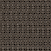 Fabrics Transparent SCREEN NATURE Screen Nature 1134 Bronze