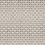 Fabrics Transparent SCREEN NATURE Screen Nature Ultimetal 1303 Platinum