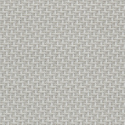 Fabrics Transparent SCREEN THERMIC S2 5% 0207 White Pearl
